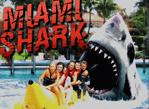 我是大白鯊