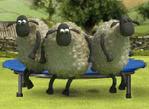 笑笑羊樂園2